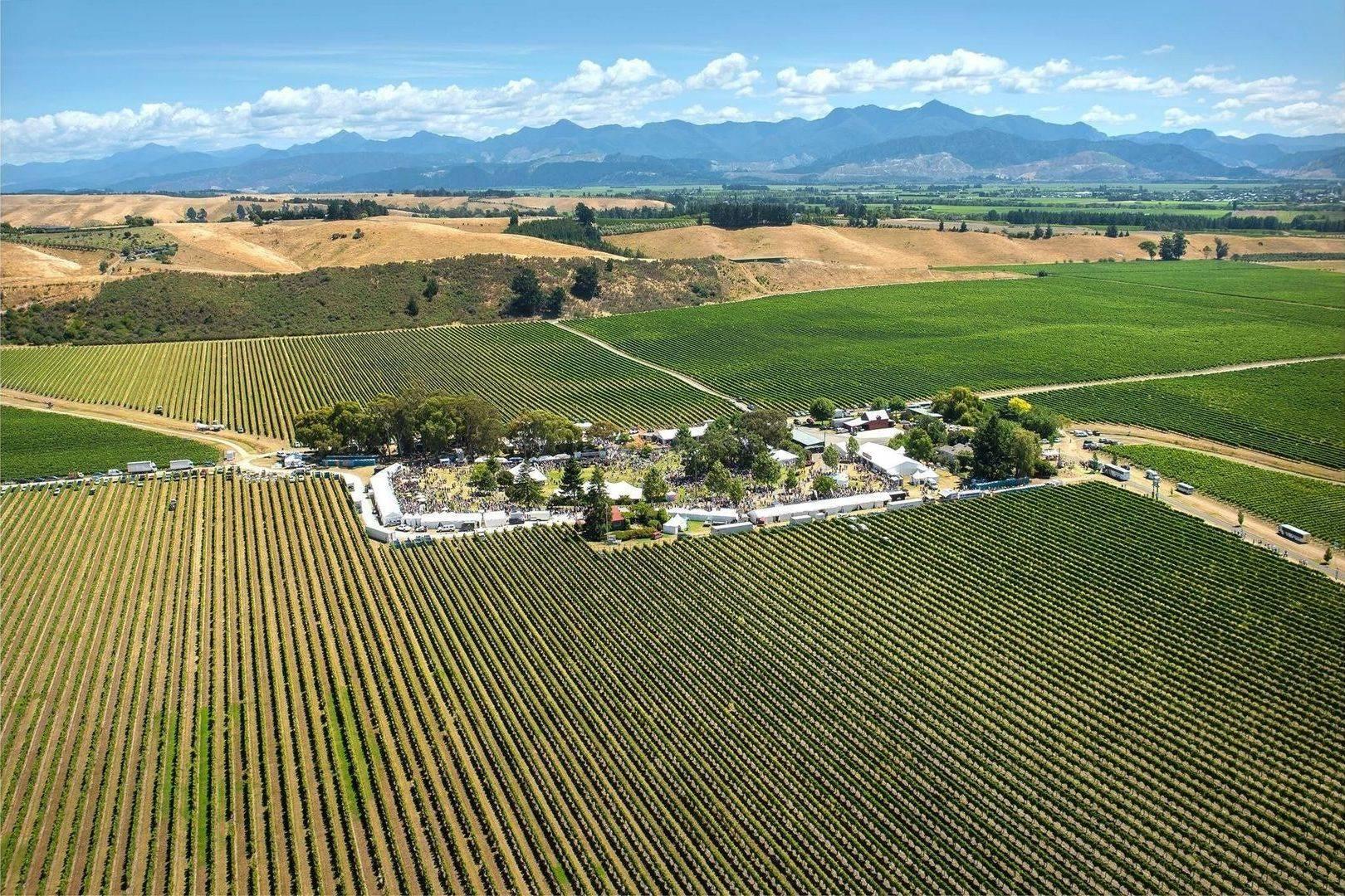 Marlborough Food and Wine